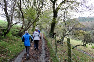Solihull Mountaineers - walking above Bryn Golau Cottage