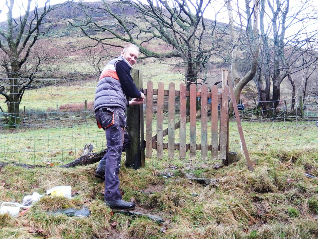 Ross at work on the fence