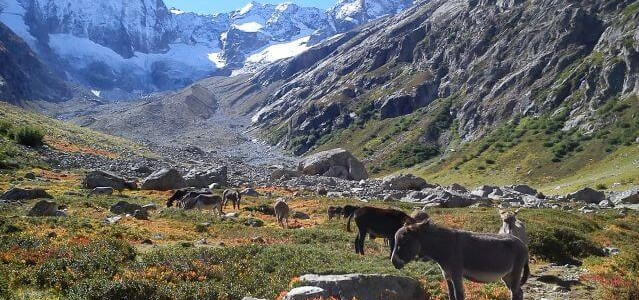 Alpine Trip to The Ecrins 18th August – 8th September 2018